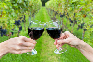 Two hands toasting with wine glasses in vineyard