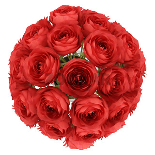 top view of red roses in vase isolated on white background