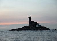 Insel bei Rovinj, Istrien, Kroatien
