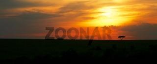 sunset at the masai mara national park kenya