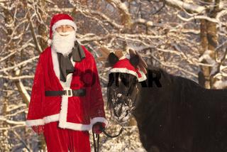 Weihnachten mit Pony
