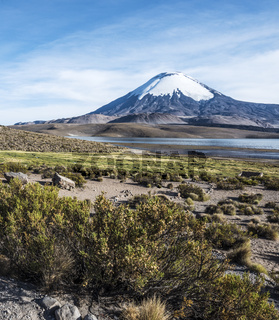 Parinacota Volcano, Lauca, Chile