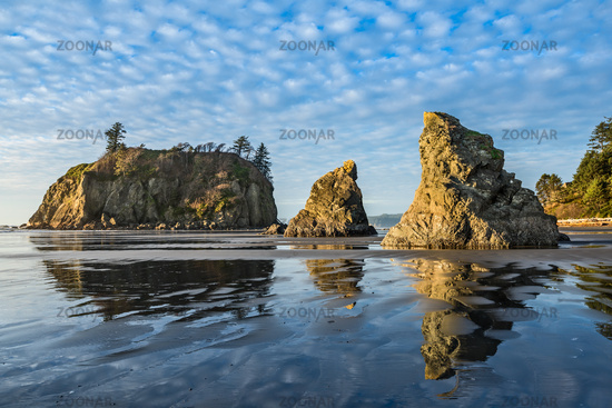 Second Beach in Olympic National Park located in Washington State.