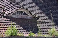 Ales Haus