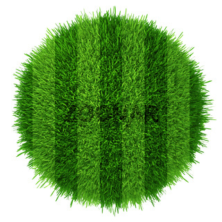 Green grass circle field background. Realistic textured