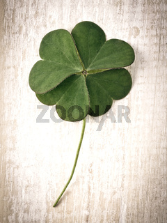 Closeup clover leaf on wooden heart  background.