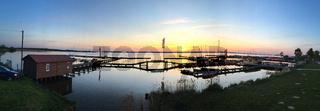 Landschaft am Dümmer See-105
