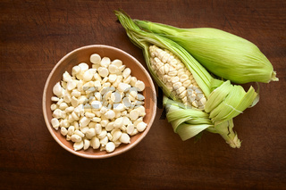 White Corn Called Choclo (Peruvian or Cuzco Corn)
