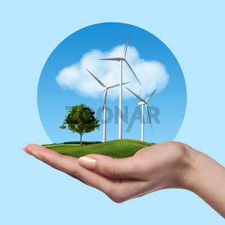 Wind turbines with tree in female hand