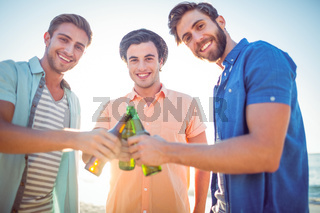 Handsome men toasting