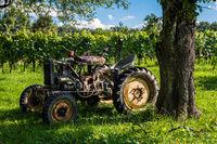 Alter Traktor im Weingarten / Südliches Burgenland