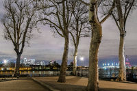 Greenwich trees with Canary Wharf in distance, London, United Kingdom