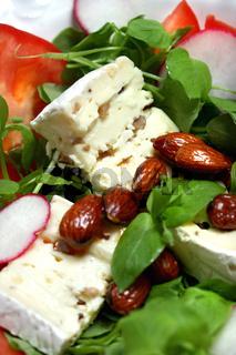 Vogelmiere-Salat mit Steinpilz-Weichkäse und