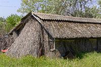 Hütte aus Reet