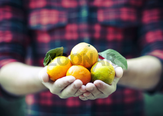 Tangerine in the hands of a man in a plaid shirt