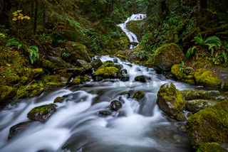 Beautiful Bunch Creek Falls in the Olympic National Park of Washington.
