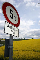 Rapsfeld und Verkehrszeichen