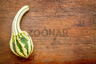 small gourd over rustic wood