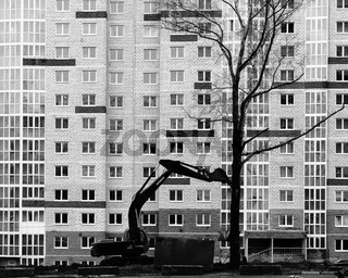 Living trees stand no chance against the might of urban construction and a powerful Hitachi digger as the digger prepares to knock down and kill a living tree against a large apartment building.