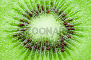 close up kiwi.