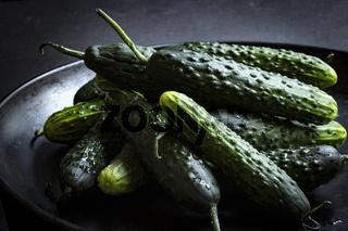 Stilleben mit frischen Bauerngurken auf einem schwarzen Teller