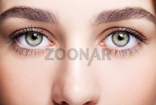 female eye zone and brows with day makeup