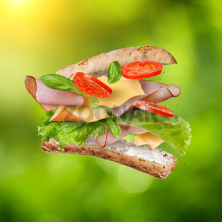 Sandwich with falling ingredients on green