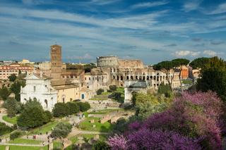 View of the Forum Romanum towards the coliseum