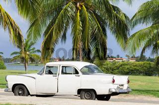 Weißer amerikanischer Oldtimer parkt unter Palmen in Havanna Cuba