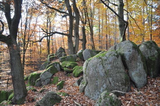zindenauer schlösschen odenwald