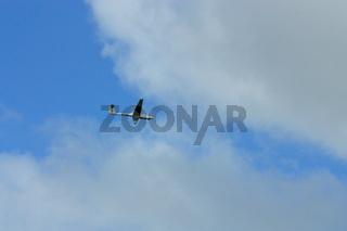 Segelflugzeug an wolkigem Himmel