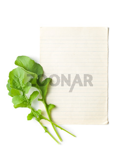 arugula leaves with blank paper