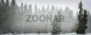 Schneefall am Wistlberg