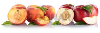 Pfirsich Nektarine Pfirsiche Nektarinen Frucht Früchte geschnitten Hälfte Obst Freisteller freigestellt isoliert