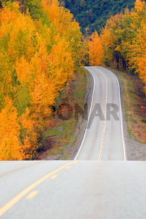Fall Color Autumn Landscape Alaska Two Lane Road Highway