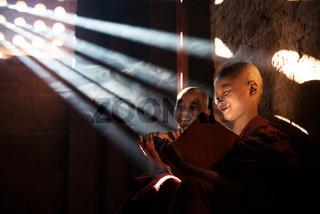 Young Buddhist novice monks reading