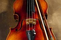 Violin7.jpg