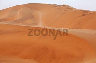 Dünen in der Namib-Wüste, Namibia; dunes in the Namib desert