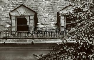 Altes Haus - verfallen und zugewachsen.