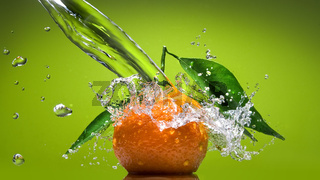 Tangerine with green leaves and water splash on green