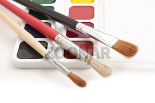 watercolor paints and  brushes