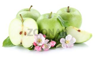Apfel Äpfel Frucht Früchte grün geschnitten Freisteller freigestellt isoliert