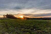 Green field at sunrise