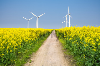clean energy in the spring