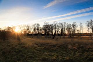Naturschutzgebiet Wittmoor