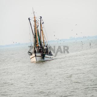 North Sea shrimp boats