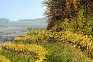 Herbst am Hohentwiel