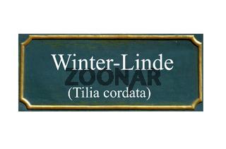 winter linde, jahreswesen, baum des jahres 2016