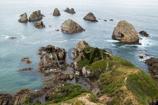 Nugget Point, Catlins, Neuseeland, New Zealand