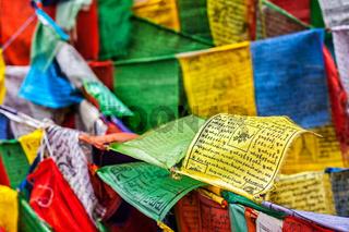 Buddhist prayer flags lungta with prayers, Ladakh